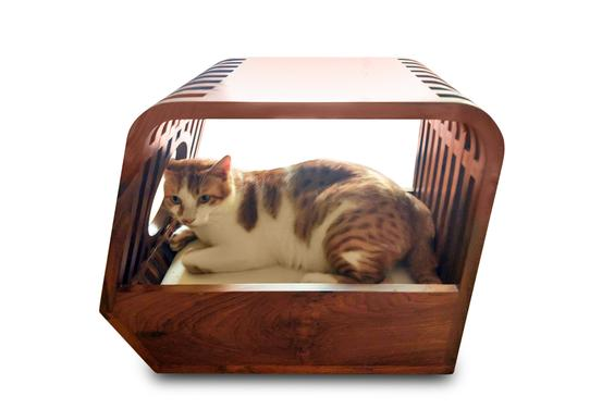 catgroove_product_image2